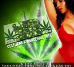 DJ Kenny – Weed Smokers Dancehall Mixtape November 2012