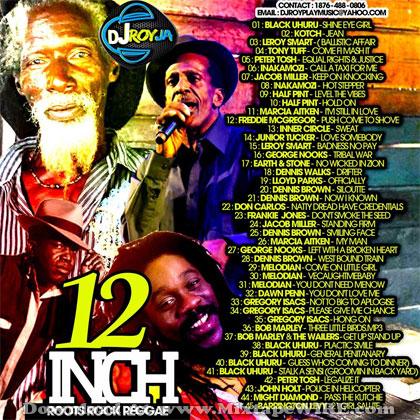 DJ Roy – 12 Inch Roots Rock Reggae Mix 2014 Mixtape Download