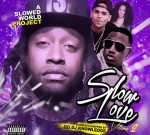 Ty Dolla Sign Ft. Chris Brown & Others – Slow Love 2